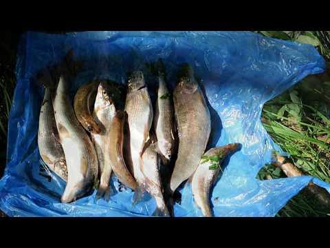 материалы, использующиеся в сугробов рыбалка на черном море зависимости того где