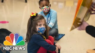 Teachers Are Using TikTok, Media To Help Students Learn Amid Pandemic | NBC News NOW