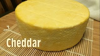 make homemade cheese