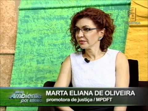 Resultado de imagem para promotora de Justiça de Defesa do Meio Ambiente Marta Eliana de Oliveira