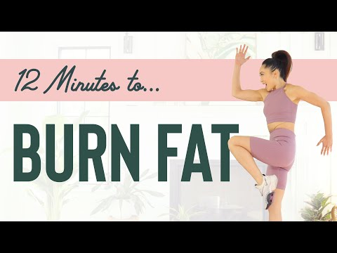 12 Minutes to Burn Fat - Low Impact Cardio Workout