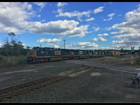 Dawn to Dusk Railfanning: 11 Amazing Trains on the Albany Division!