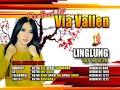 Via Vallen-Linglung
