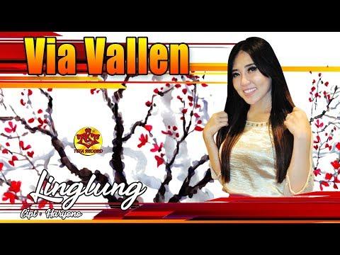 Via Vallen - Linglung