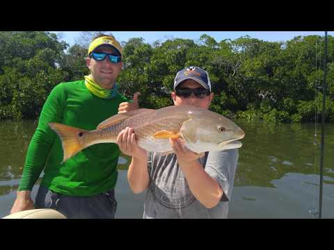 Tampa Bay Spring Fishing Report - Snook, Redfish, Grouper, Kingfish