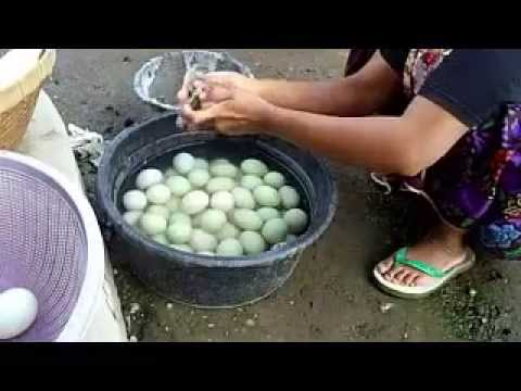 Cara membuat telur asin bakar khas lombok YouTube