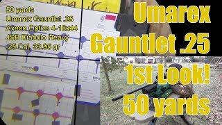 Umarex Gauntlet 25 at 50 Yards - AR15 COM