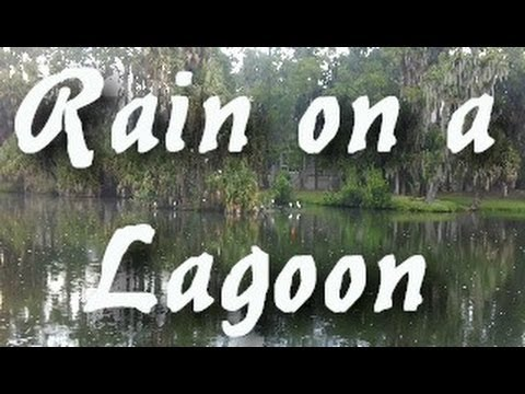 Sleep and Nature Sounds: Relaxing Rain on Lagoon 2 Hrs Long