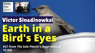 Victor Sinadinoski: Earth in a Bird's Eyes