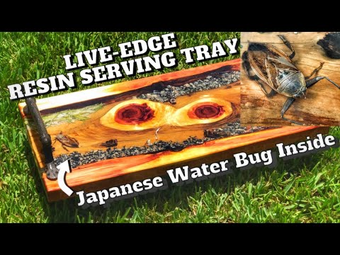 How to Make a River Table Style Serving Tray | Resin Project