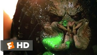 Download Predator (1987) - What the Hell Are You? Scene (5/5)   Movieclips