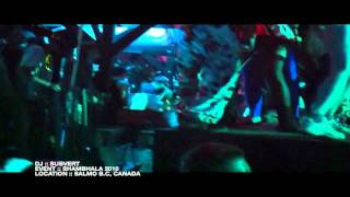 The Cranberries - Zombie (Subvert Remix) Live @ Shambhala 2010 HQ