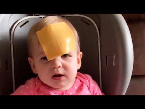 Greg Kretschmar - I Can't Help It: I Laughed at The Cheese Challenge...