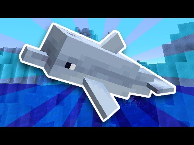 minecraft-dolphins-are-here