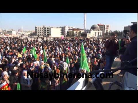 Nusaybin'de Öcalan'a özgürlük ve Cizre'deki Olayları Kınama Mitingi Yapıldı