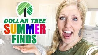 Must Have Dollar Tree Summer Finds! Things To Stock-Up On For Summer When You Shop at Dollar Tree!