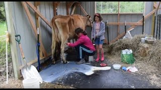 Buying a Cow Part 2: Erica Arrives