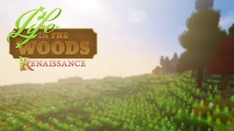 MODPACK-REVIEW: Life in the Woods!