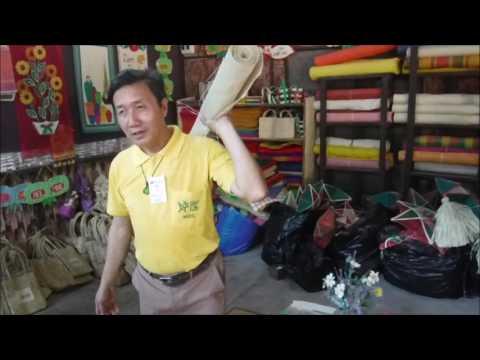 BOHOL: Bohol Bee Farm Tour