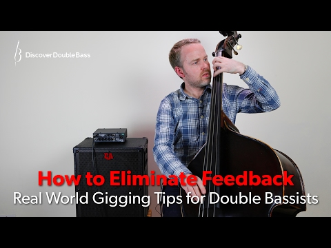 How To Eliminate Feedback On The Double Bass