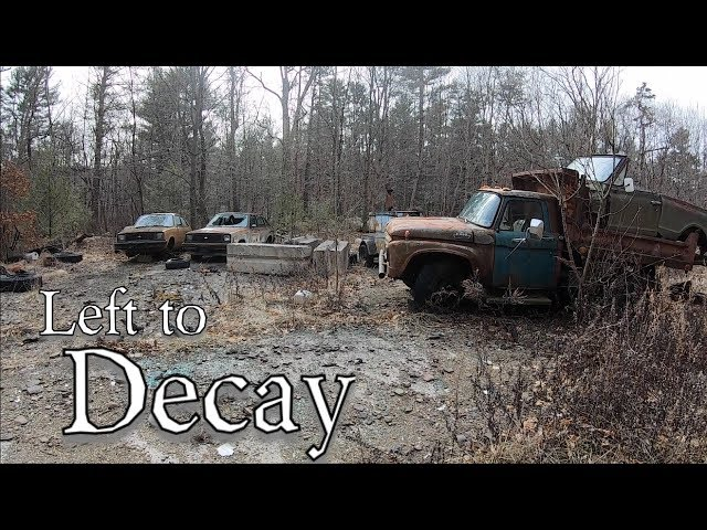 Group Of Cars Left To Decay