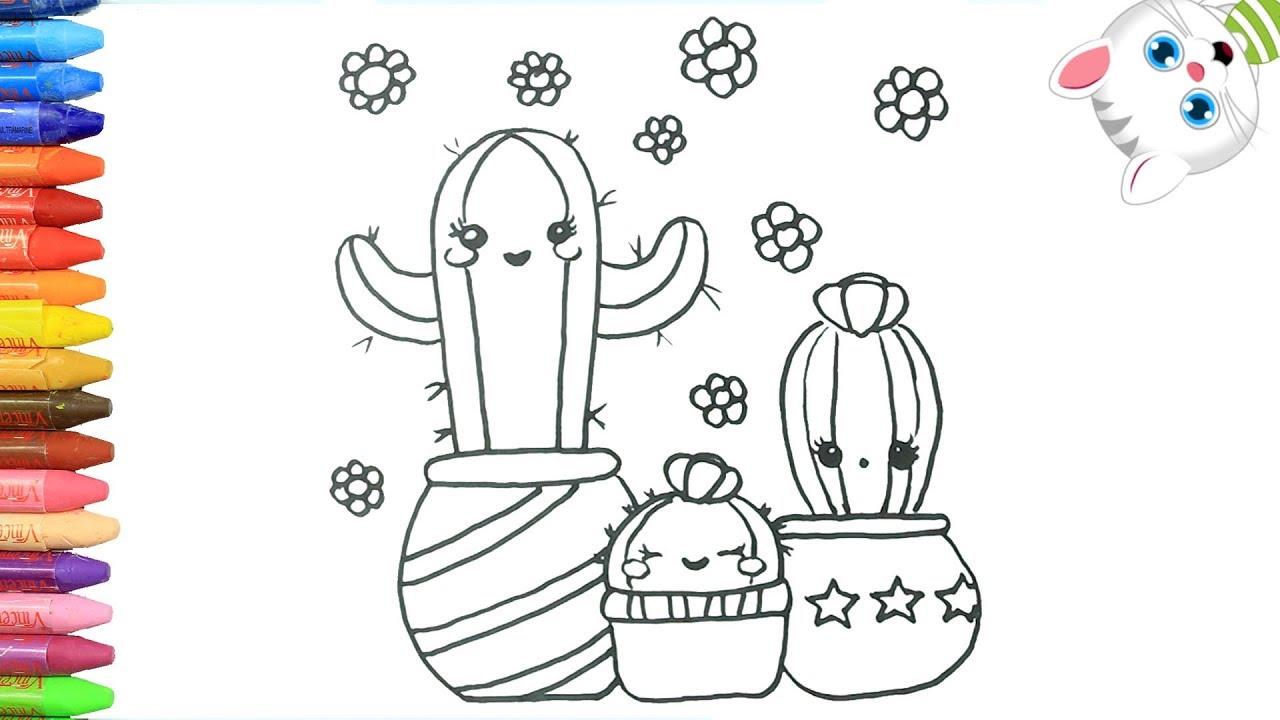 Cómo Dibujar Y Colorear Un Cactus Dibujos Para Niños Con Mimi Aprender Colores
