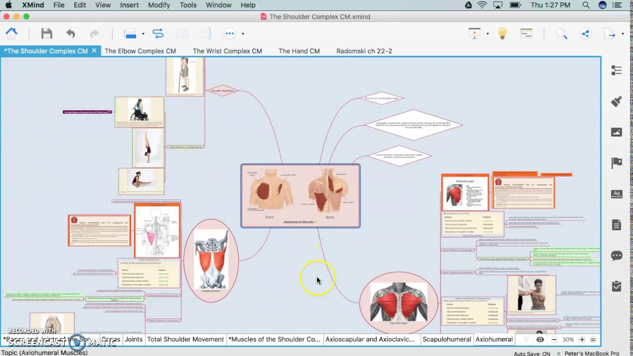 Concept Map Video Anatomy Lab Youtube