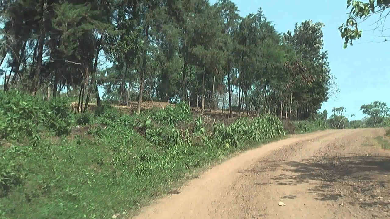 Ethiopia 119: Road Mago to Jinka