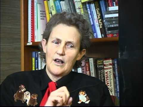 Temple Grandin Interview with CTD