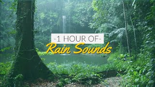 1 HOUR RELAXING RAIN SOUNDS | Nature Sounds For Sleep, Meditation, Study, Autogenic Training, PTSD