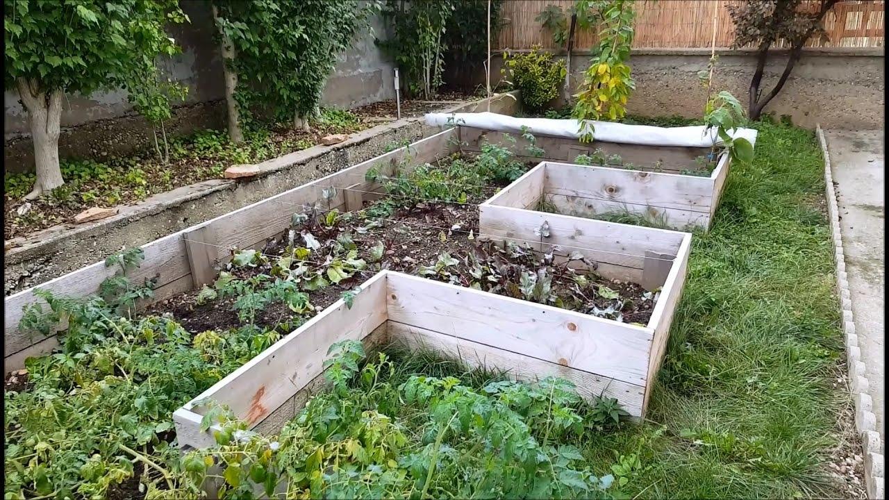 Un Potager En Carré récoltes régulières dans quelques m2 de potager en carré! résultat ?