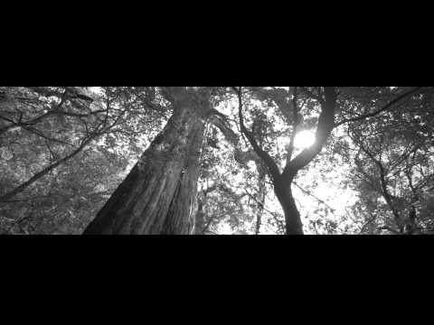 Yukilovey 尋找稜角 official music video