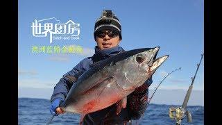 第32集:澳洲钓获蓝鳍金枪鱼,顶级刺身随便吃  Bluefin tuna Catch and cook in Portland,Australia