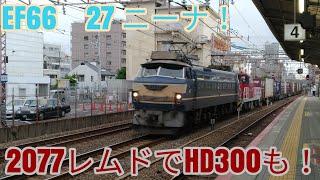 【最後のEF66 0番台】【ニーナ!】5月31日2077レEF66 27牽引貨物ムドでHD300も!EF200とスーパーはくとのおまけあり