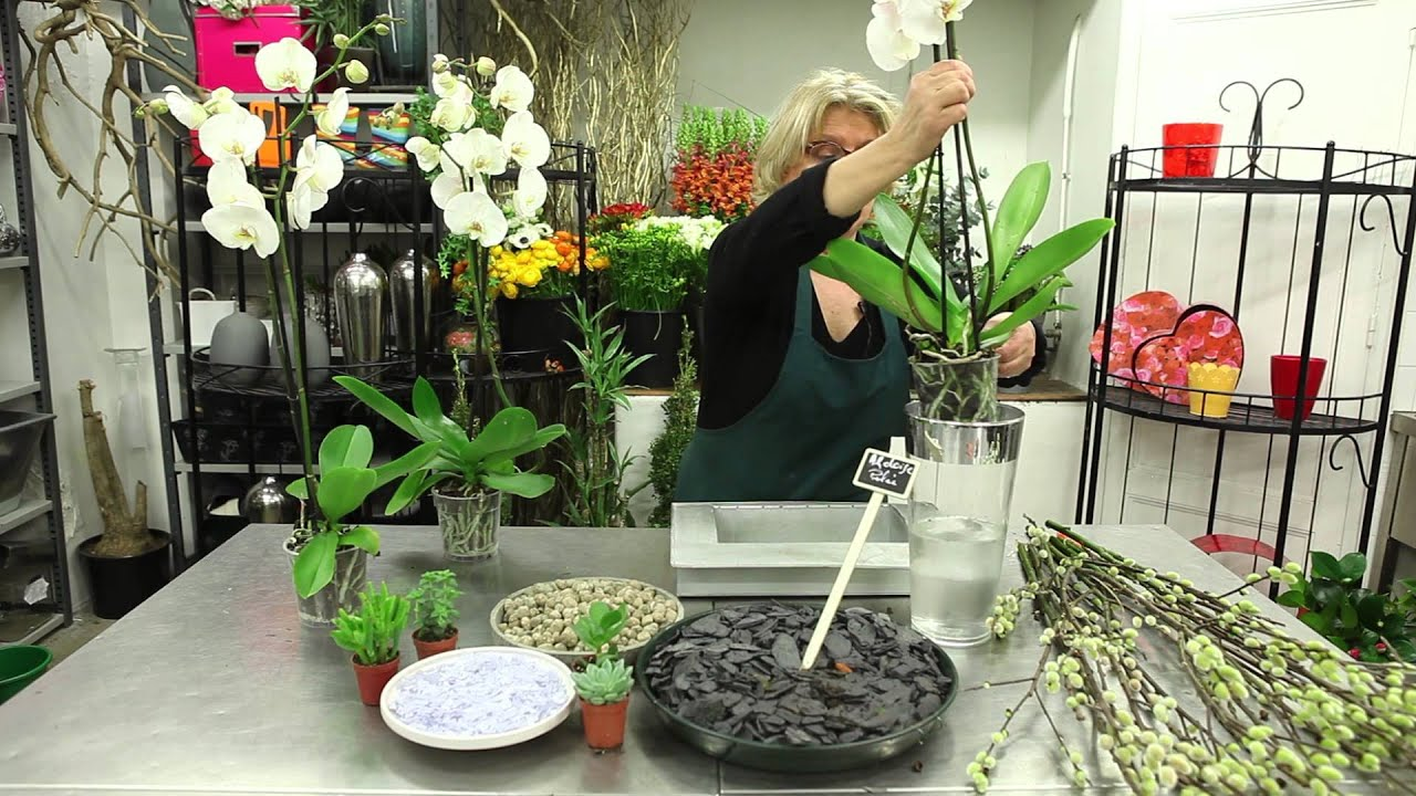 Tuto Composition florale d'Orchidées blanches - YouTube