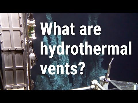 What are hydrothermal vents?