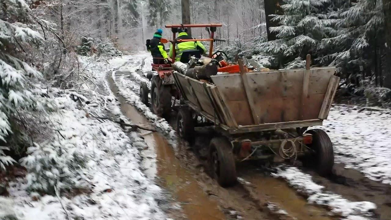 Holz Machen Mit Güldner G15 Für Lagerfeuer