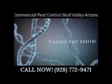 Commercial Pest Control Skull Valley Arizona