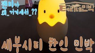 세부시티 한인 민박 탐방기 (Feat. 테리네민박) C…