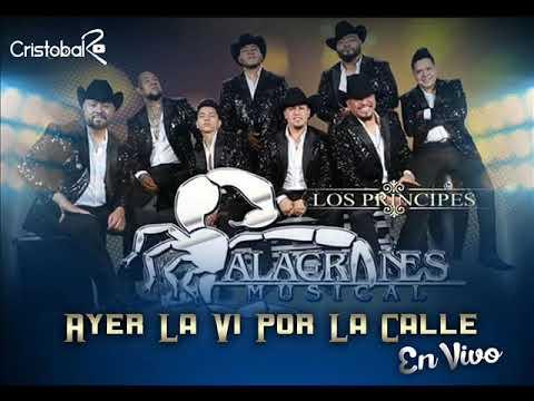 Ayer La Vi Por La Calle - Alacranes Musical [Live] 2018