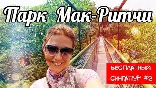 Бесплатный Сингапур ☆ Парк Мак-Ритчи ☆ MacRitchie Reservoir(В Сингапуре много интересных мест, где вход бесплатный. Например, Парк Мак-Ритчи. Вы можете сэкономить деньг..., 2014-12-05T08:47:55.000Z)