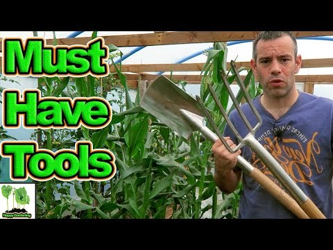 What Tools Do You Need For Your Garden Or Allotment