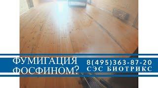 видео Фумигация дома