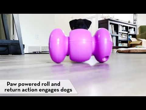 KONG Replay - Interactive Treat Dispensing Dog Toy