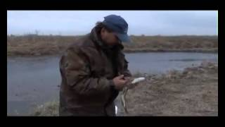 Видео уроки рыбаков