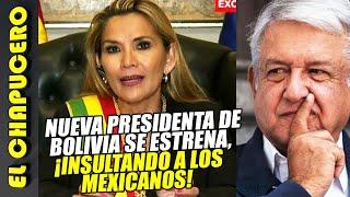 Autoproclamada presidenta de Bolivia ¡así atacó a AMLO y a mexicanos! Le ardió el asilo de Evo