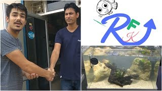 STEP BY STEP BUILDING A LOW TECH PLANTED TANK IN INDIA| No CO2 Cylinder used|Dolphin Tanks|HD1080p