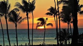 【癒しの自然音】ハワイの波の音(ホテルのベランダから) 1時間!作業 睡眠 読書 瞑想 ヨガ 勉強用BGM