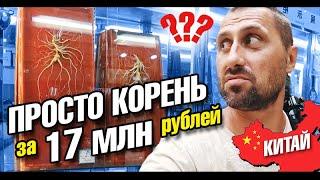 Китай. Как пьют китайцы? Корень за 8 млн рублей! Треш кухня. Русские в Китае. Гуанчжоу влог