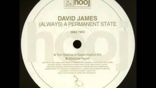 David James - (Always) A Permanent State (Medicine Remix)